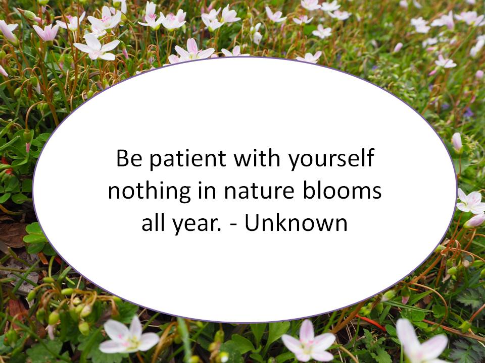 Quote, The Botanical Life
